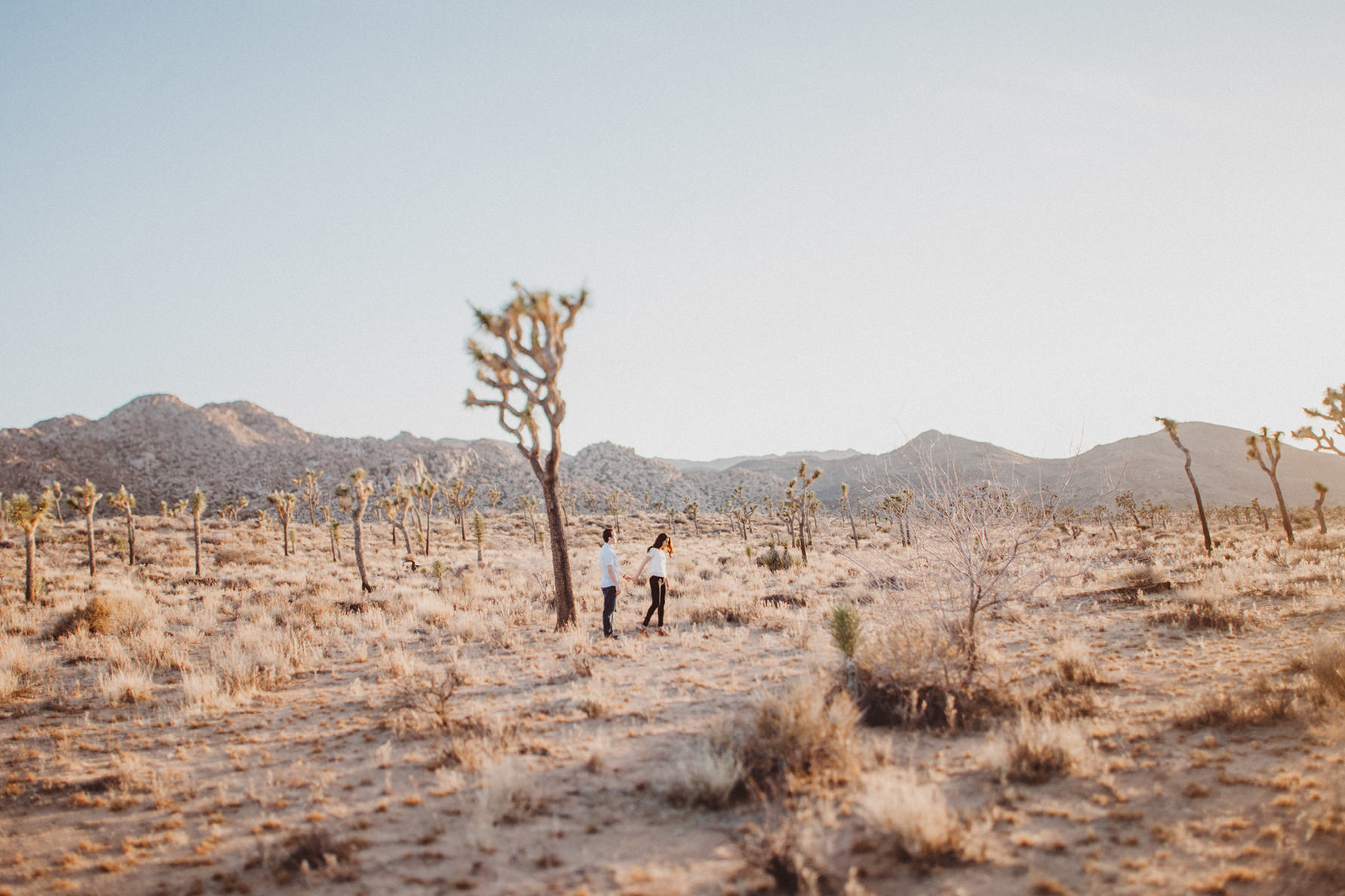 irena-ryan-joshuatree-engagement-photos-california-photographer026