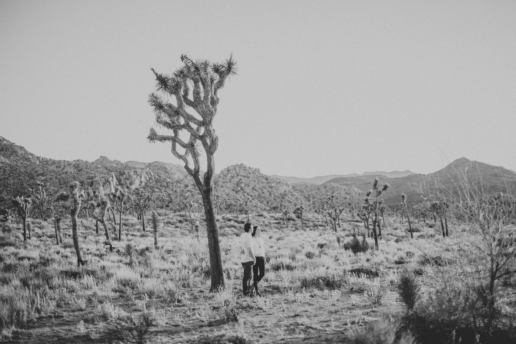 irena-ryan-joshuatree-engagement-photos-california-photographer027