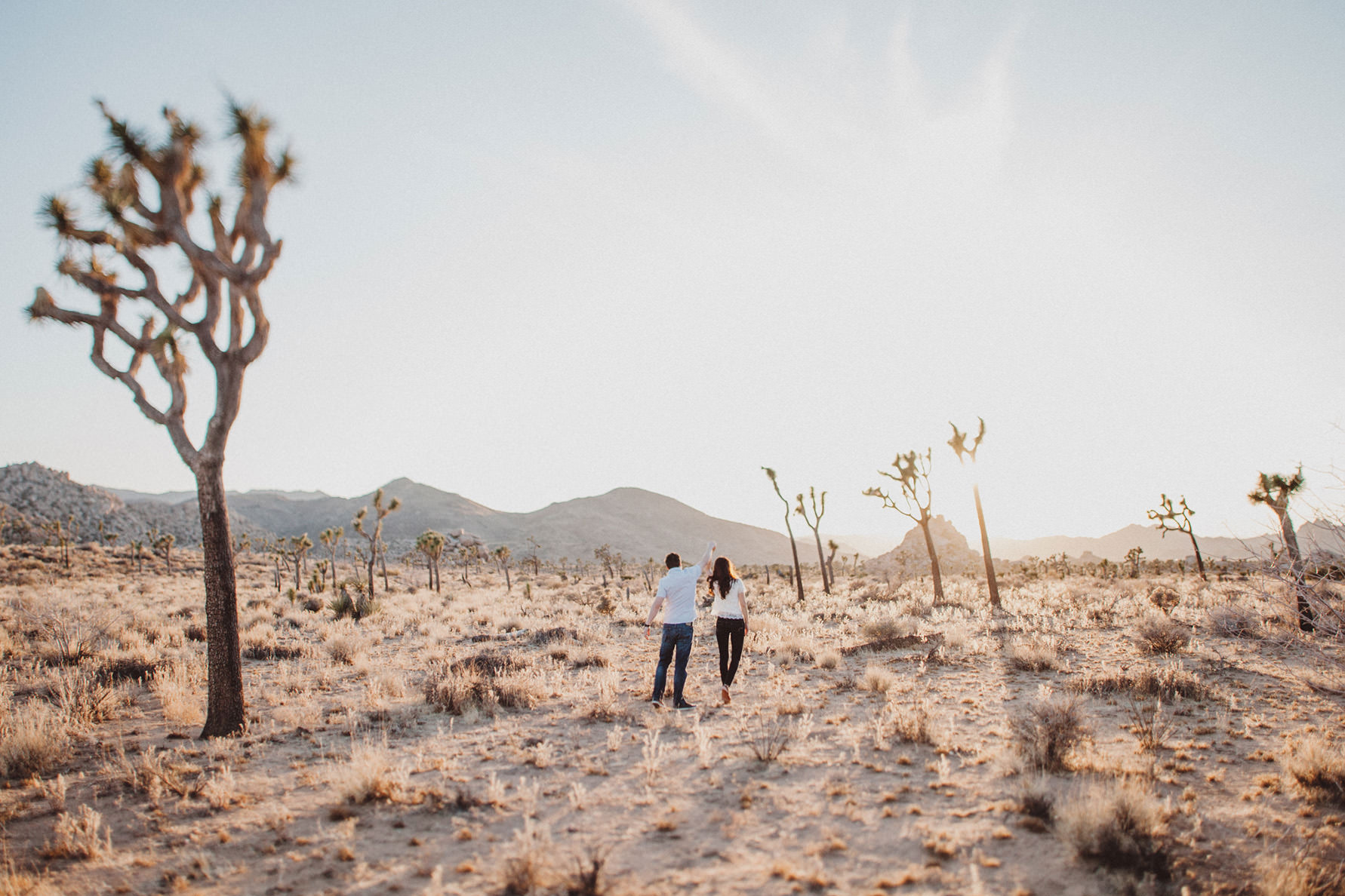 irena-ryan-joshuatree-engagement-photos-california-photographer028