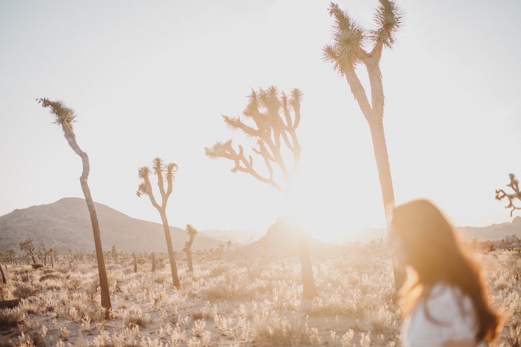 irena-ryan-joshuatree-engagement-photos-california-photographer036