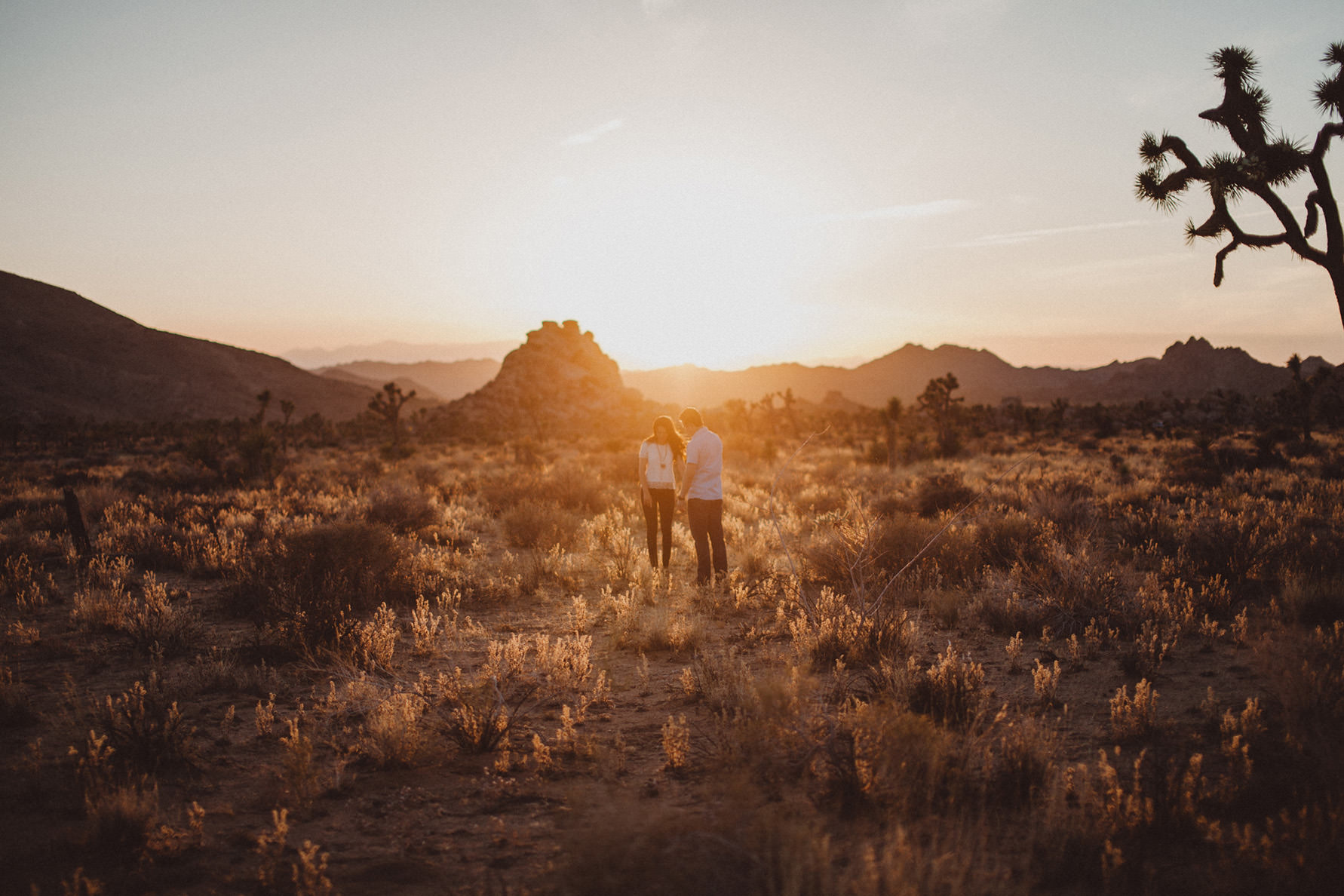 irena-ryan-joshuatree-engagement-photos-california-photographer040