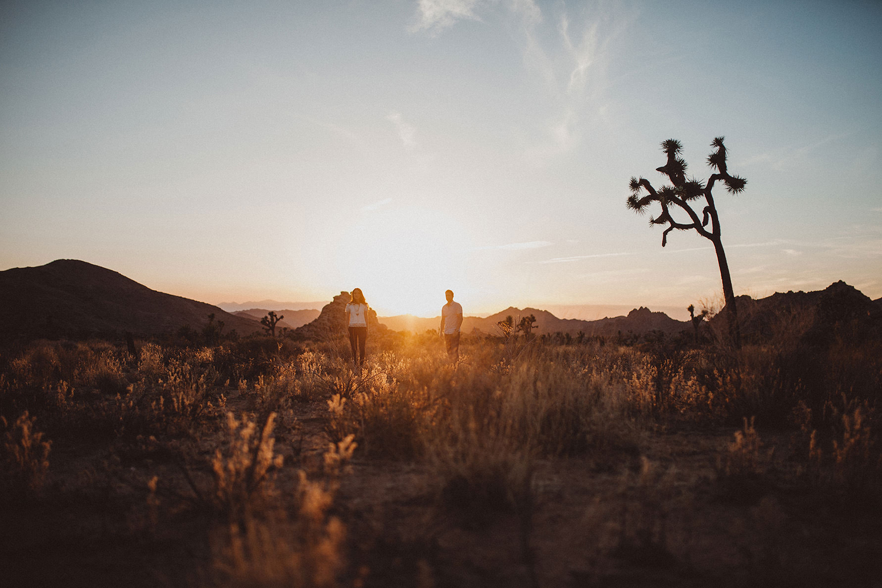 irena-ryan-joshuatree-engagement-photos-california-photographer042