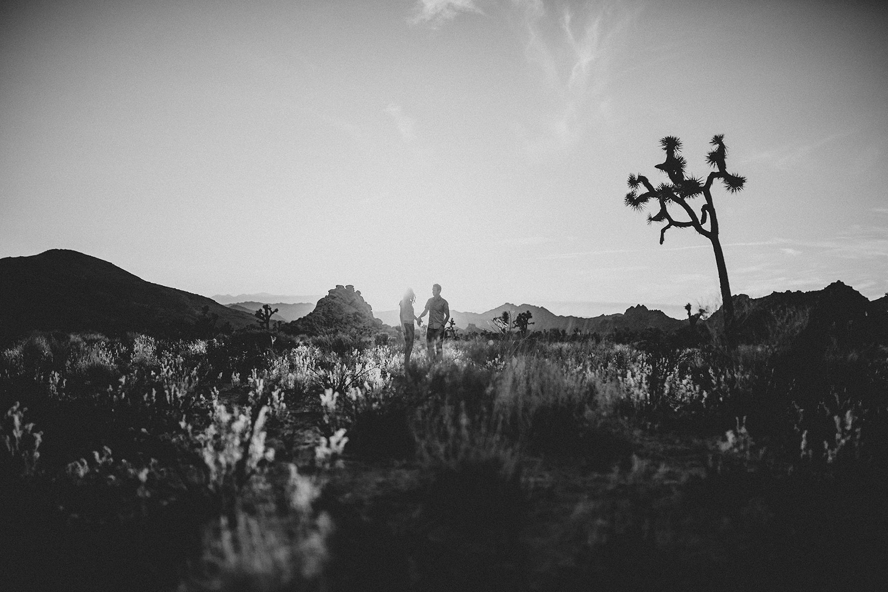 irena-ryan-joshuatree-engagement-photos-california-photographer043