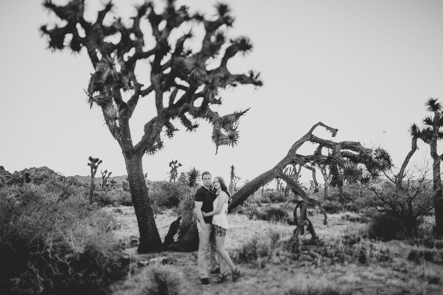 irena-ryan-joshuatree-engagement-photos-california-photographer072