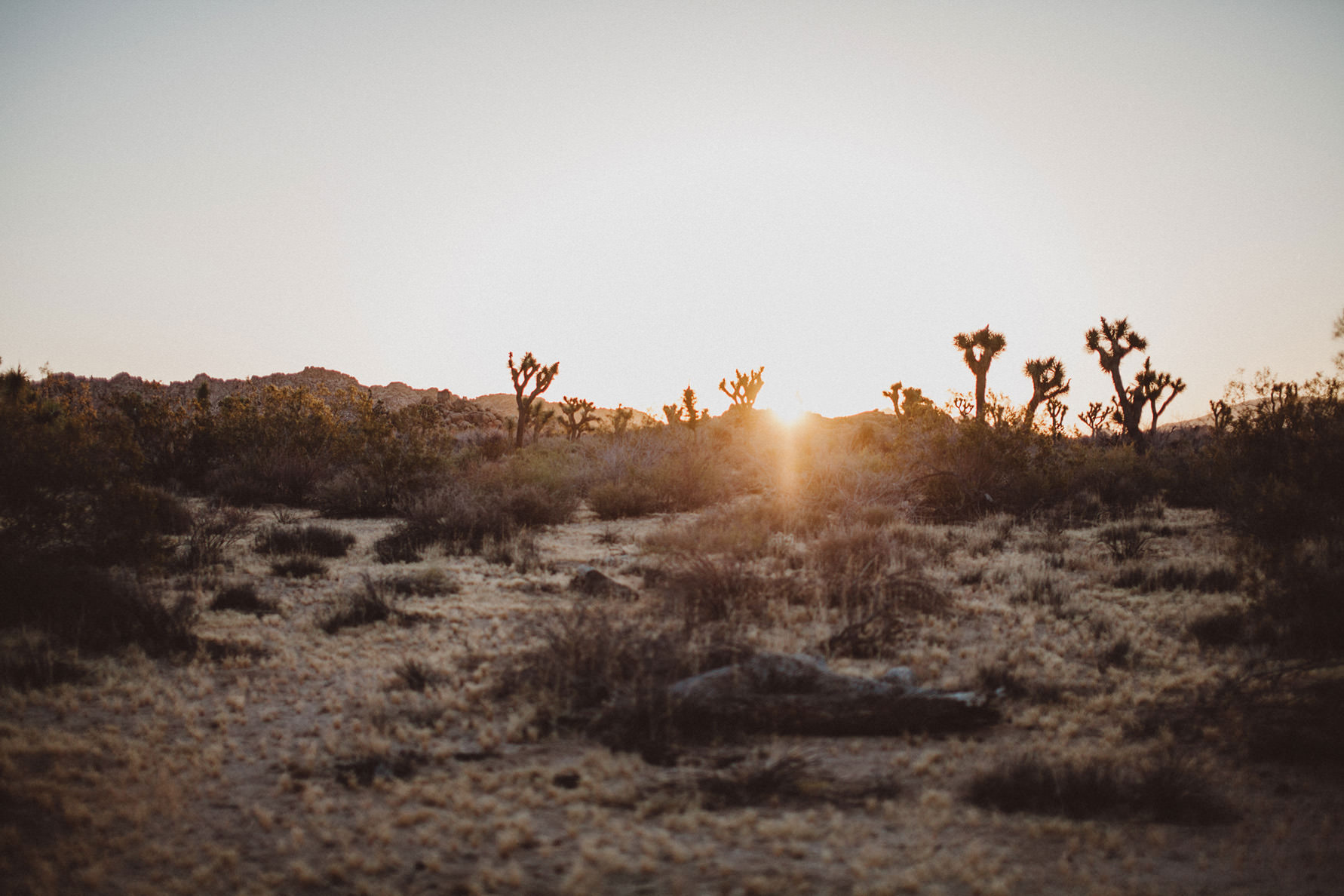 irena-ryan-joshuatree-engagement-photos-california-photographer075