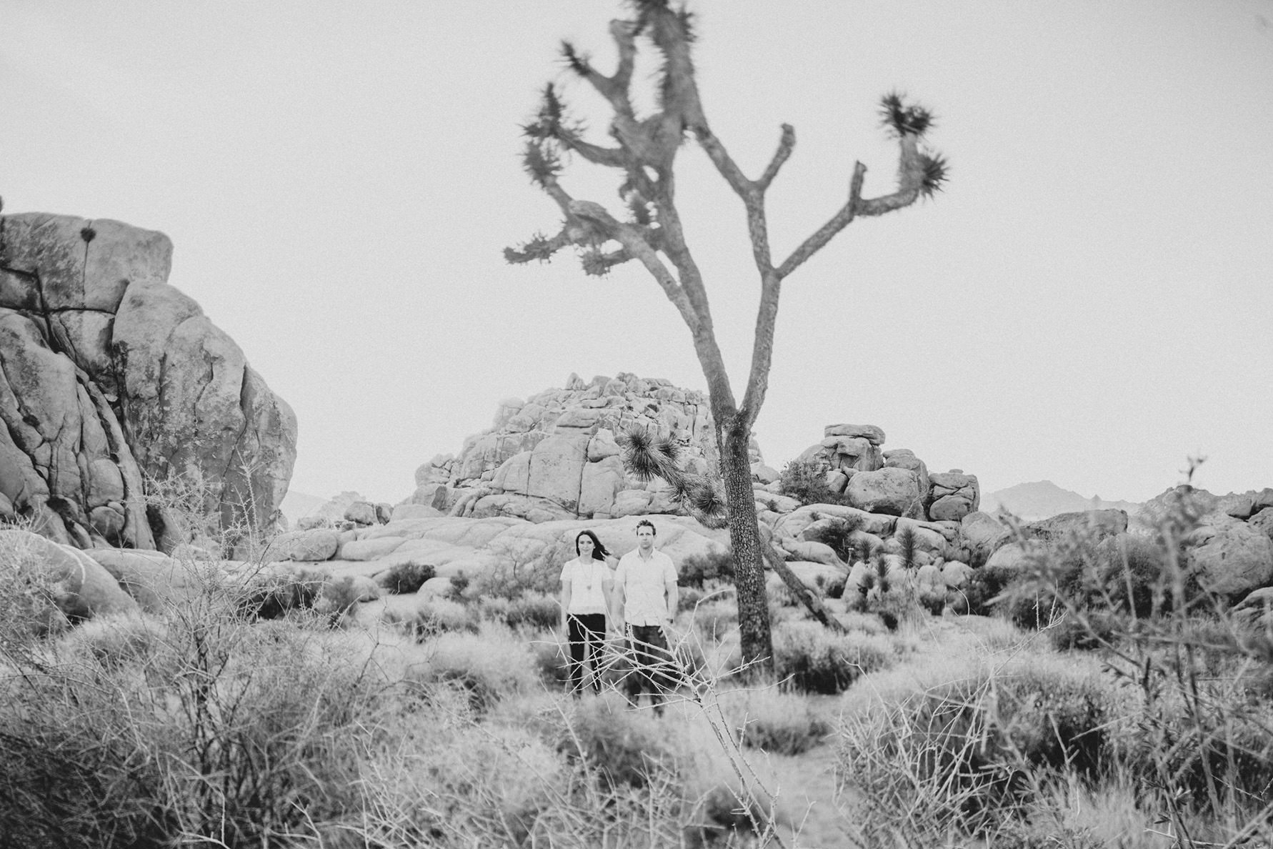 irena-ryan-joshuatree-engagement-photos-california-photographer016