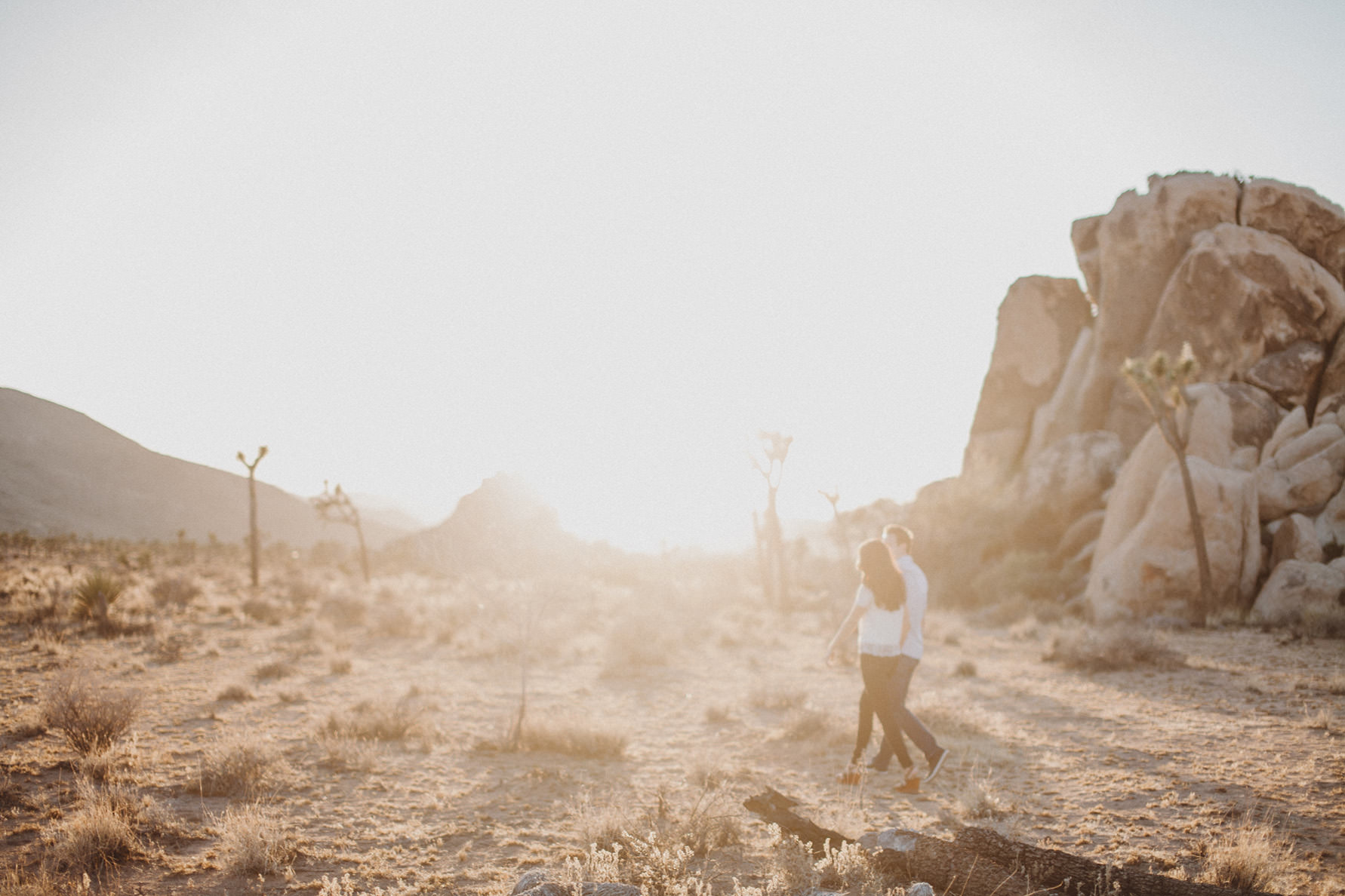 irena-ryan-joshuatree-engagement-photos-california-photographer024
