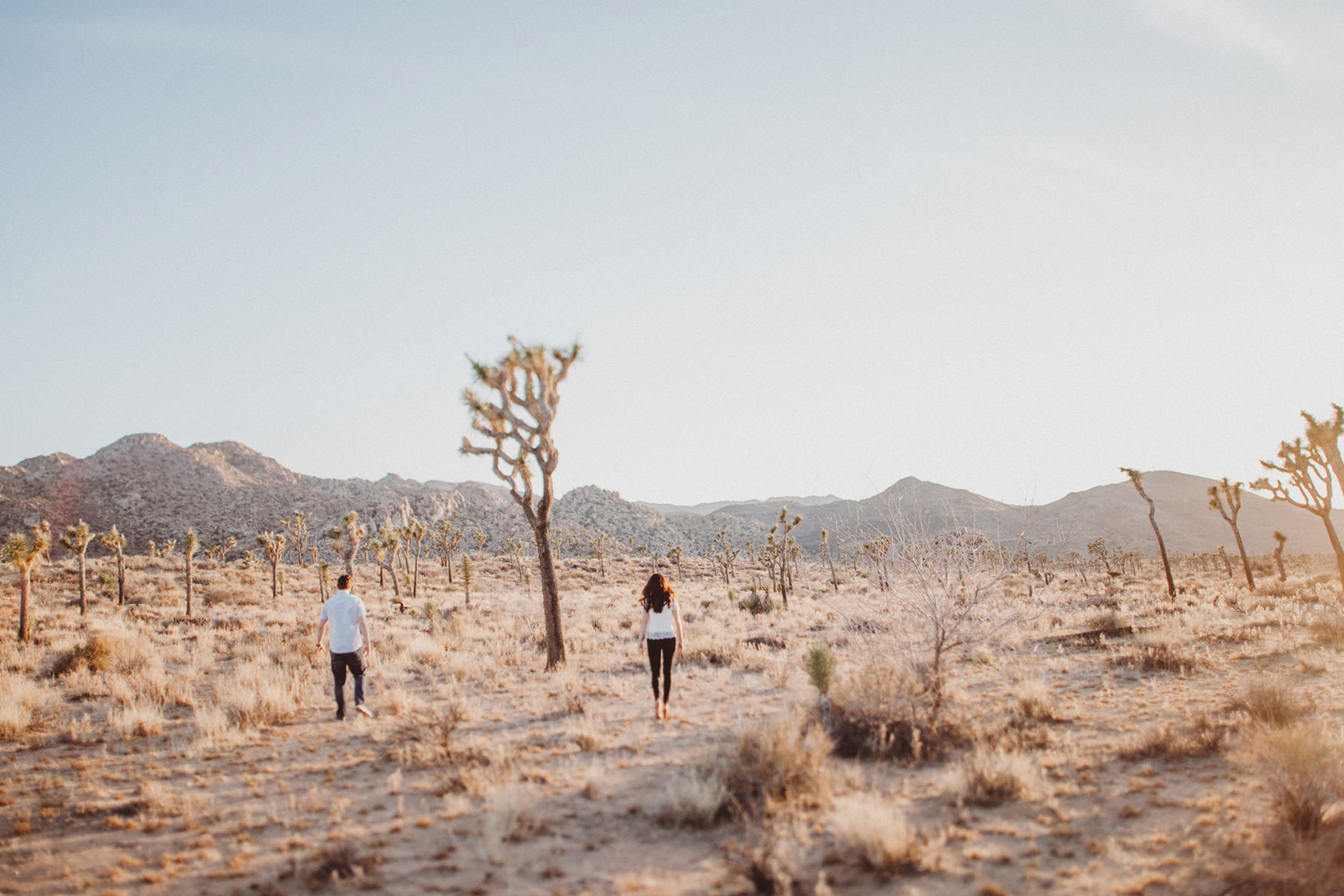 irena-ryan-joshuatree-engagement-photos-california-photographer025