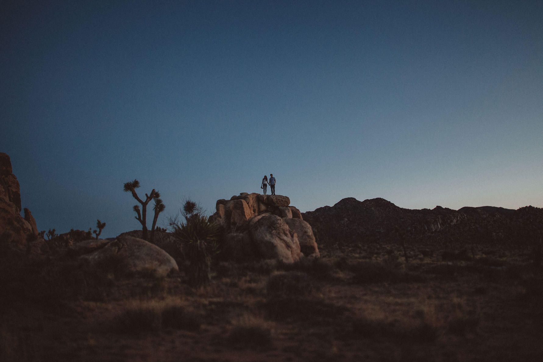 irena-ryan-joshuatree-engagement-photos-california-photographer065